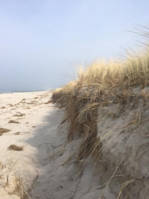 Urlaub Ostsee Baby