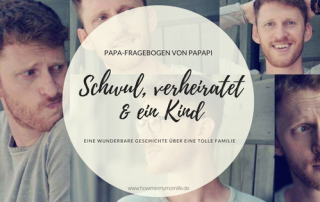 Papa-Fragebogen Blog Papapi