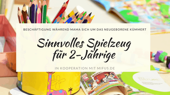 sinnvolles spielzeug f r 2 j hrige geschwisterkinder how i met my mom life. Black Bedroom Furniture Sets. Home Design Ideas